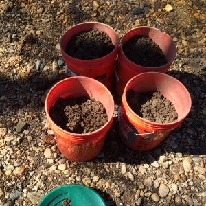 Gemstone Hunting Secrets Buckets of Dirt