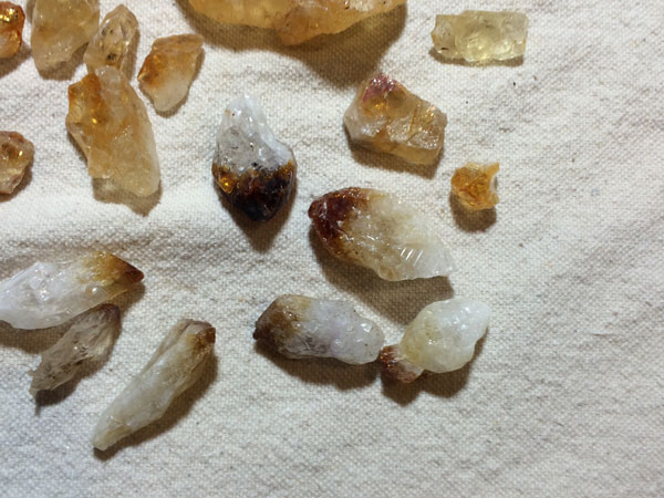 Collection Citrine Dark Tips