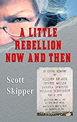 A Little Rebellion Now and Then by Scott Skipper Cover